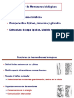 tema-13a_membranas.pdf