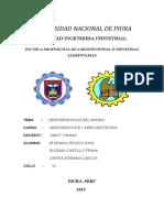 DESHIDRATACION_DE_MANGO_AGRONEGOCIOS.docx
