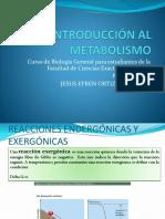 Clase 11 Introducción Al Metabolismo