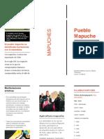 Triptico Mapuche