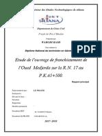 Rapport OA Jendouba 0