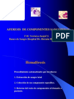 presentaciondeaferesisjornadasii-pptrecuperado1-090621084859-phpapp02