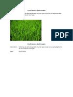 Deficiencia Nutricionales en Cultivo de Arroz