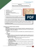Práctica calificada de los   Referentes.doc