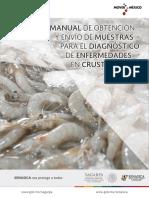 Manual Toma y Env o de Muestras de Enfermedades en Crust Ceos