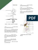 Review Plant Organ and Human Organ System
