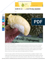 The Complete Guide to 234 Thailand Durian Varieties