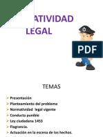 4- Normatividad Legal