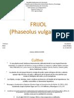 frijol-180601021620
