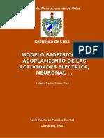 Modelo Biof. Del Acoplamient. de La Actv. Eléctr.neuronal
