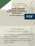 2 Enterobacteriaceae Clasificacion I (1)
