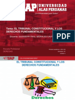 PLANTILLA UAP 2019-1B - SESION 4. EL TRIBUNAL CONSTITUCIONAL  Y LOS DD FF.ppt