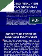 El Proceso Penal y Sus Principios Generales