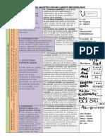 Niveles de Conceptualización de La Lectoescritura PDF