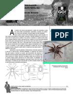 aracnideos.pdf