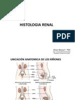 HISTOLOGIA_RENAL.pdf