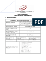 RS Formato Informe Final 2018 - II-RSVI