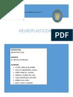 Informe sobre Neuroplasticidad