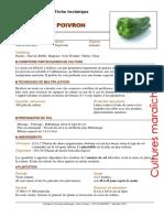 11136-Chambre d Agriculture de La Martinique 2007 Fiche Technique - Poivron