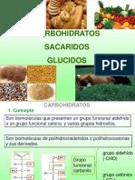 Clase Carbohidrato 12-13