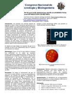 expresion de la xilanasa Cfl xyn11a de cellulomonas uda. en levadura Pichia pastoris por induccion de metanol
