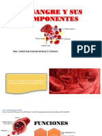 La Sangre y Sus Componentes