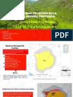 PROBLEMAS DE GESTION RNL - BIODIVERSIDAD URP KV (1).pptx
