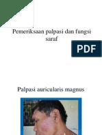 Pemeriksaan Palpasi Dan Fungsi Saraf Pada Morbus Hansen