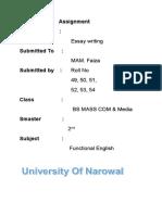 Essay Writting 077