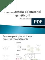 aislamiento-plasmidossn.pdf