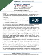2T2019_AP1_esboço_caramuru-1.pdf