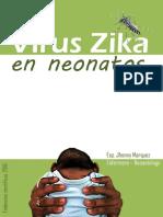 Guía Del Virus Zika en La Madre y El Neonato