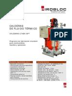 Calderas_Fluido_Termico_GFT.pdf