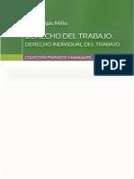 Rojas Miño, Irene - Derecho Individual Del Trabajo