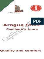 Aragua State