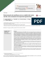 Metilmercurio Cabello