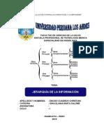 JERARQUIZACION DE LA INFORMACION.docx