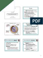 JHS viruses.pdf