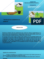 Biodigestor Merino UCV Ingeniería Ambiental