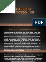 DEBIDO-PROCESO.pdf