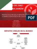 Hepetitis b y c
