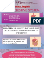 Digestive System Group 1