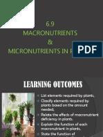 Macromicronutrients in Plants.ppt