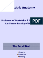 Obstetric-Anatomy.ppt