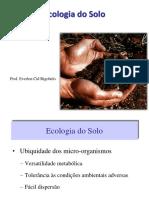 Ecologia Do Solo