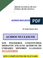 Clase 23 1. Acidos Nucleicos