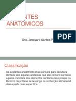 acidentes anatomicos