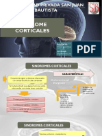 SINDROMES CORTICALES  2
