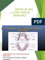 Componentes de Una PPR