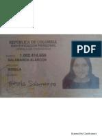 Brisila Salamanca Alarcon